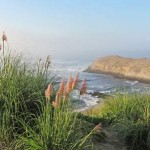 Best Places to Walk in Northern California