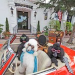 Carmel California Trip Report