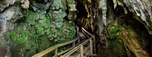 The Kawiti tour follows a wooden boardwalk through a limestone cave system.