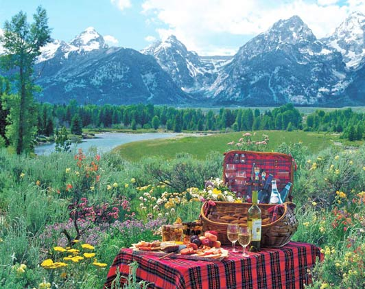 Authentic luxury travel is a picnic in a national park.
