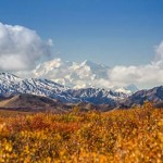 Denali (previously known as Mt. McKinley) with fall colors.