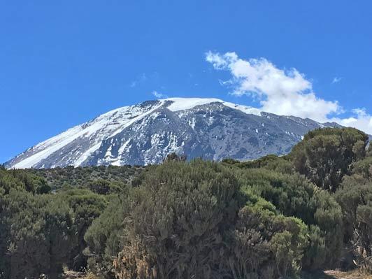 kilimanjaro-edited-for-alt