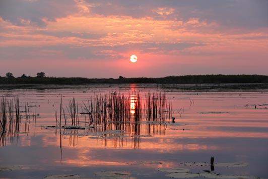 Nothing better than a Botswana sunset.