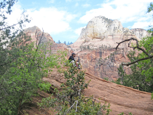 US National Parks - Zion NP is a great place for dialing back and getting in touch.