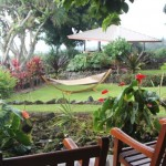 Best Big Island Boutique Hotel