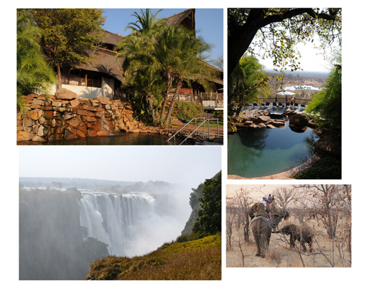 Read about one family's wonderful Botwana safari...