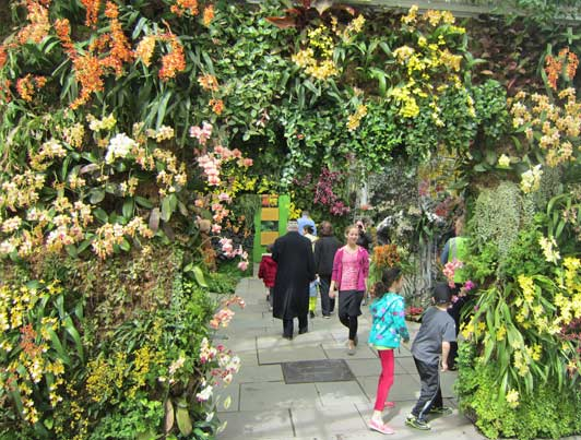 Visits to the NYBG are a family tradition for many New Yorkers.