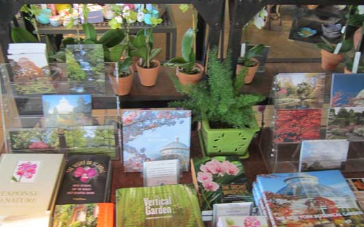 NYBG's Shop in the Garden carries plants, pots, garden books, clothing, mugs and more.