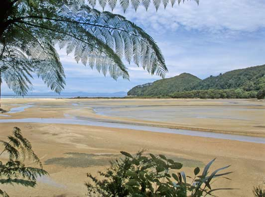 Some of New Zealand's prettiest beaches are in Abel Tasman National Park on the South Island.