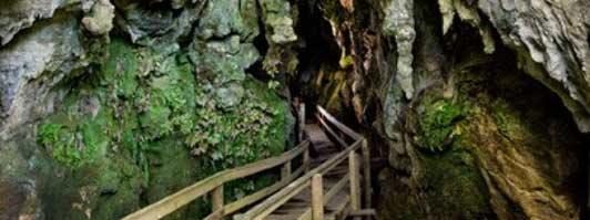 The Kawiti tour follows a wooden boardwalk through a limestone cave system.