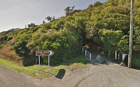 """The Hokitika Glow Worm Dell offers a free of charge view of the """"tail lights."""""""