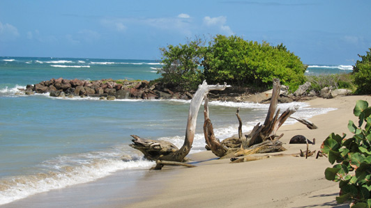 Nevis - no cruise ships, no high-rise resorts, just unspoiled beaches and warm hospitality.