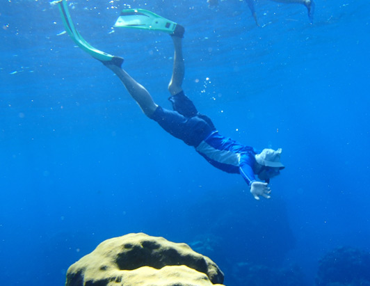 Columbia Shallows is one of Cozumel's best dive sites.