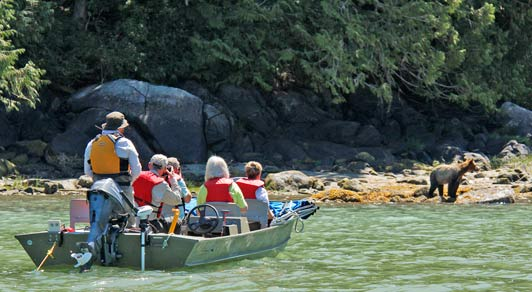 Knight Inlet Lodge guests watch grizzly bears in the estuary near the lodge.