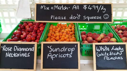 One of the joys of summer in New Zealand: just-picked stone fruit.