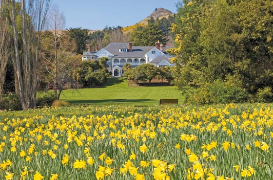 Beautiful gardens surround this romantic Christchurch accommodation.