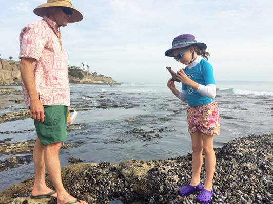 The small cove beaches in Shell Beach are perfect for tidepooling.