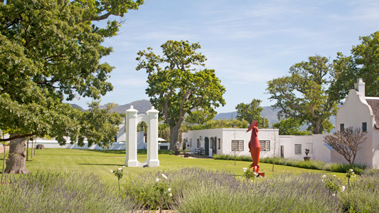 Edwardo Villa sculptures, placed around the grounds of the Steenberg Estate, add the beauty of the location.