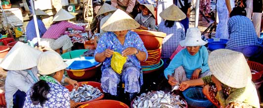 Selling fish in Hoi-An Market.