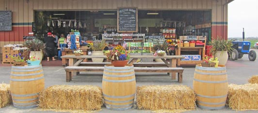 At Pezzini Farms, visitors can buy fresh produce and gourmet food items or dine at the food truck parked nearby.
