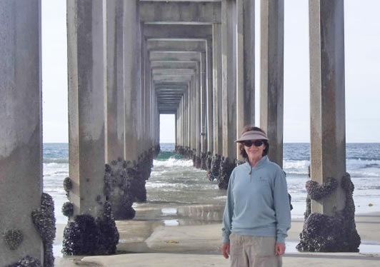 The iconic Scripps Pier at La Jolla Shores Beach, San Diego.