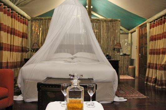 Tented lodgings at Shinde Camp in Botswana.