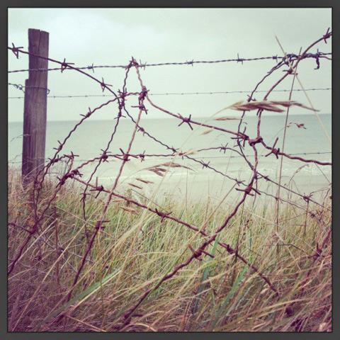 Utah Beach, Normandy. Photo credit Doug Hamilton.